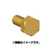 ANE0011 六角ボルトヘッドSS 真鍮製 45個 [ボルトヘッドシリーズ]
