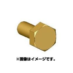 ANE0012 六角ボルトヘッドSSS 真鍮製 45個 [ボルトヘッドシリーズ]