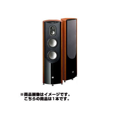 TS8000 [フロアスタンディングスピーカーシステム 1本]