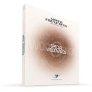VI SPECIAL WOODWINDS / STANDARD