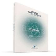 VI ELEMENTS / STANDARD