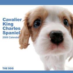 2009 カレンダー THE DOG キャバリア・キング・チャールズ・スパニエル