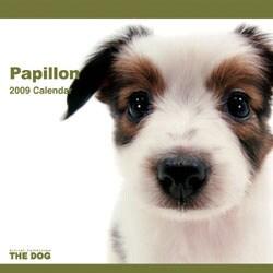 2009 カレンダー THE DOG パピヨン