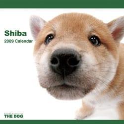 2009 カレンダー THE DOG 柴