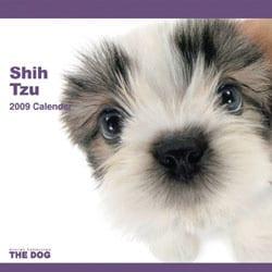2009 カレンダー THE DOG シー・ズー