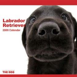 2009 カレンダー THE DOG ラブラドール・レトリーバー
