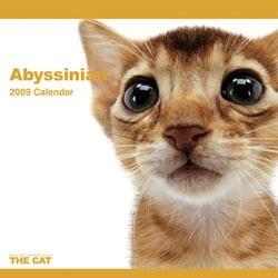 2009 カレンダー THE CAT アビシニアン