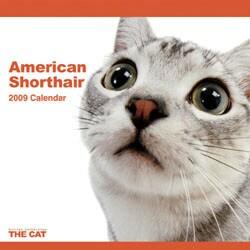 2009 カレンダー THE CAT アメリカン・ショートヘアー