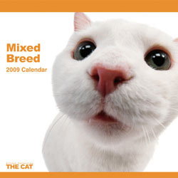 2009 カレンダー THE CAT ミックス