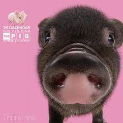 2009 カレンダー THE PIG PINK