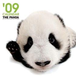 2009 カレンダー THE PANDA