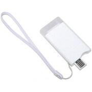 BI-LIBT/WH [iPod用バッテリー ホワイト]