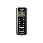 TY-VR301(H) [ICレコーダー 1GB シルバーグレー]