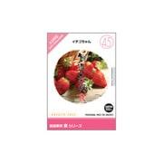 創造素材 食(45)イチゴちゃん [Windows/Mac]