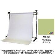 BPS-1305 [No.13 トロピカルグリーン 1.35×5.5m]