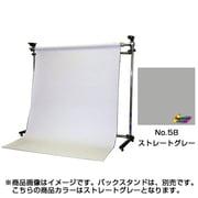 BPS-2705 [58/特寸 ストレートグレー 2.75×5.5m]