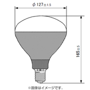 PRS-500WBD [白熱電球 写真用レフランプ E26口金 500W形 昼光(デイライト)用]