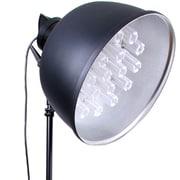 TS-555-B [定常光照明 Beglight tk-19n 東芝ネオボールZ EFD21EN 19個付き]