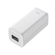 BTN-DC2W USB出力付ポータブルバッテリー電源 ホワイト [USB出力付ポータブルバッテリー電源 単3×4本タイプ]