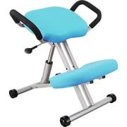 RBC-G05AX-BL [Balance Chair(バランスチェア) ブルー]