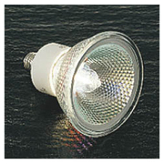 AEE592274 [白熱電球 ハロゲンランプ E11口金 110V 100W クリア]