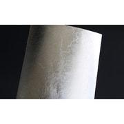 TF907 銀箔 フィニッシュ [ディテールアップ素材]