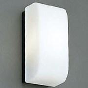 BI-4189 [白熱灯バスルームライト]