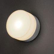 AA-60065 [LEDポーチライト シルバー 電球色]