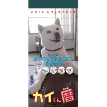 カイくん週めくり [2012年カレンダー]