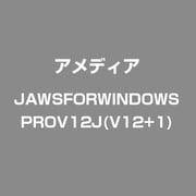 JAWS for Windows Professional Ver.12.0 日本語版 Ver.12+1 [Windowsソフト]