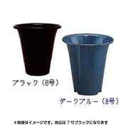 アイリスラン鉢 [7号 ブラック]