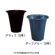 アイリスラン鉢E [8号 ブラック]