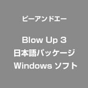 Blow Up 3 日本語パッケージ [Windows]