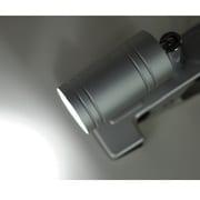 LTL-C6N-S [LEDクリップライト 昼白色 シルバー]