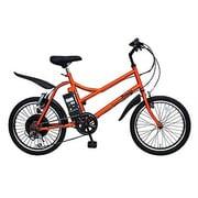 SS-1 AA2005-PO [Prozza(プロッツァ) 電動アシスト自転車 20型 外装6段変速 パッションオレンジ]