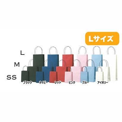 SAC 手さげ紙袋 L 紺 S719-NB
