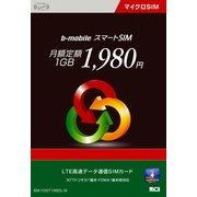 BM-YDGT1980L-M [データ通信SIM 月額定額1GB 1980円 マイクロSIMサイズ]