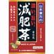 濃い旨い 減肥茶 ティーバッグ 10g×24包