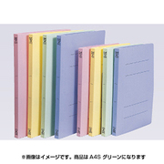 FF-A4S-GN PPフラットファイル(A4S)グリーン [書類整理グッズ]