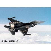 4844 [1/72 F-16C SOLO トルコ空軍]