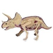 立体パズル 4D 動物解剖 No.23 トリケラトプス 解剖モデル