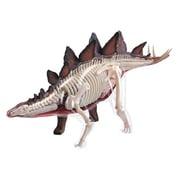 立体パズル 4D 動物解剖 No.25 ステゴサウルス 解剖モデル