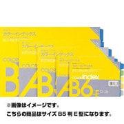 13684 [カラーインデックス カラーインデックス CI-24 5色5山 B5判E型]