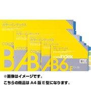 13683 [カラーインデックス カラーインデックス CI-22 5色5山 A4版E型]