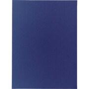 12671 54CLB ブルー ポケットホルダー