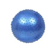 WJ-574 [フィットネスボール 55cm ブルー]
