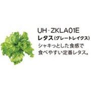 UH-ZKLA01E [Green Farm用 水耕栽培種子キット レタス(グレートレイクス)]