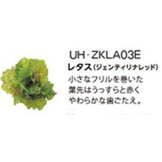 UH-ZKLA03E [Green Farm用 水耕栽培種子キット レタス(ジェンティリナレッド)]