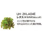 UH-ZKLA04E [Green Farm用 水耕栽培種子キット レタス(サラダボウルレッド)]