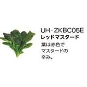 UH-ZKBC05E [Green Farm用 水耕栽培種子キット レッドマスタード]